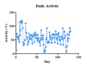 Activity small