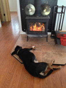 In front of Fire M